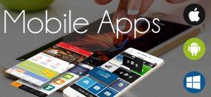 enterprise-app-development-company-in-vietnam